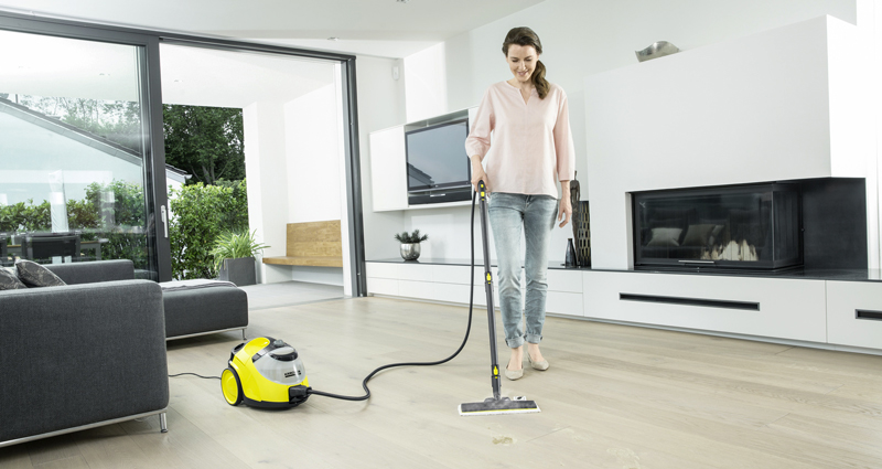 Professional Steam Cleaners